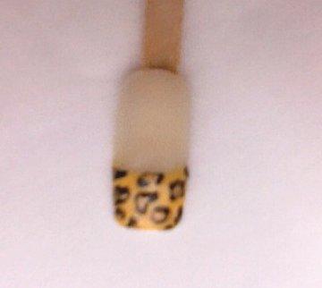 nails  detailz salon