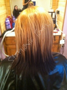 solid color and partial foils
